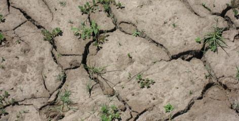 Drought : Worst California has ever seen