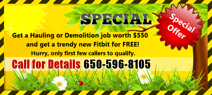 Spring Special - Free Fitbit